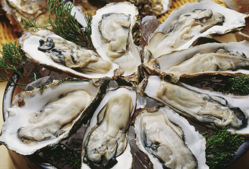 raw oysters on platter